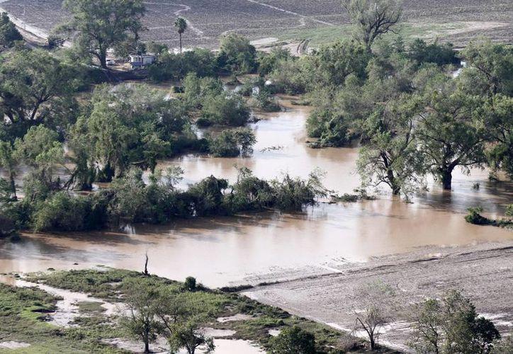 Severas afectaciones en Navolato, Sinaloa, a consecuencia de Manuel. (Notimex)