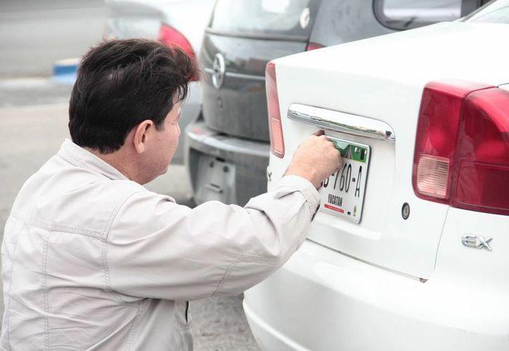 Las personas han acudido a renovar sus placas en Mérida en un número más importante del que se esperaba. (SIPSE)