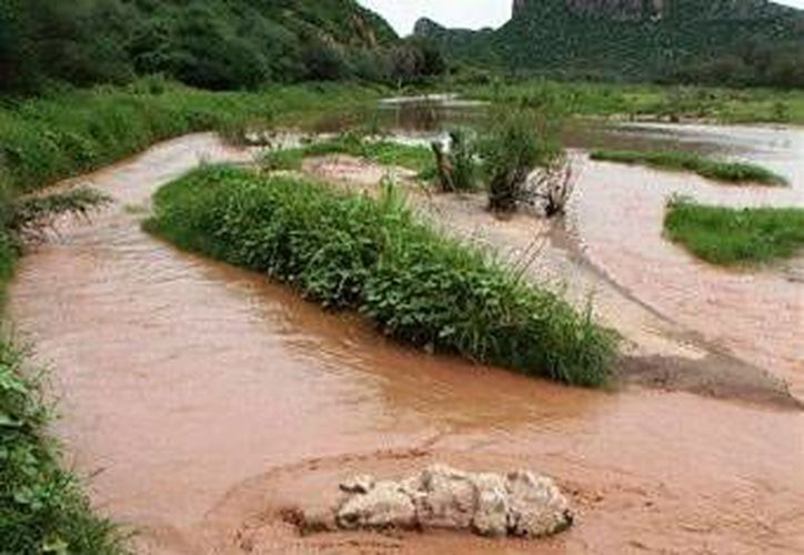 Aunque según Protección Civil no hubo derrame, se trata de residuos tóxicos provenientes de la minera Grupo México. (Foto: AP)