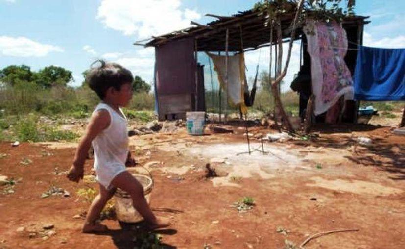 La pobreza se redujo entre 2012 y 2014 de un 38.8% a un 35.9% por el desarrollo económico del Estado. (Redacción/SIPSE)
