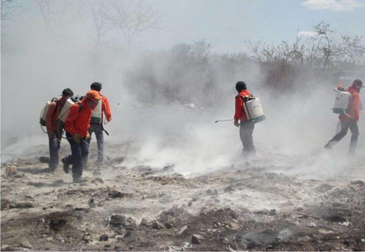 La detección oportuna de los incendios ha permitido que sean sofocados de inmediato. (Cortesía)
