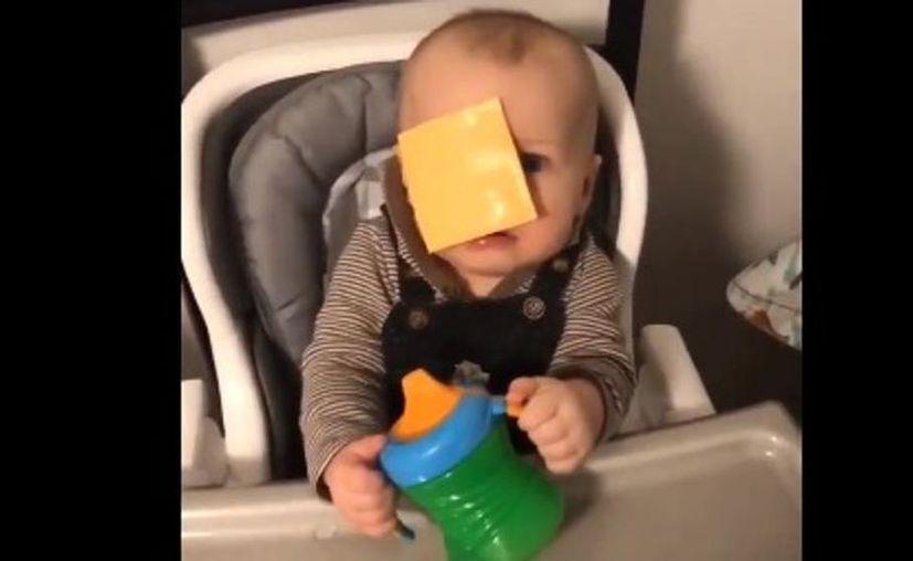 Todo empezó el 28 de febrero, cuando un tuitero publicó un vídeo en el que le lanzaba una loncha de queso a su hermano menor. (Twitter)