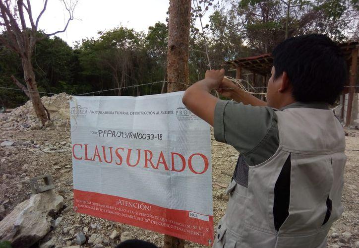 La Procuraduría Federal de Protección al Ambiente realizó clausuras debido a que no contaban con las autorizaciones de Impacto Ambiental. (Foto: SIPSE)
