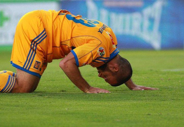 Tigres se fue al sótano de la Tabla General del Torneo Apertura 2013, aunque con un partido pendiente contra el América. (Agencias)