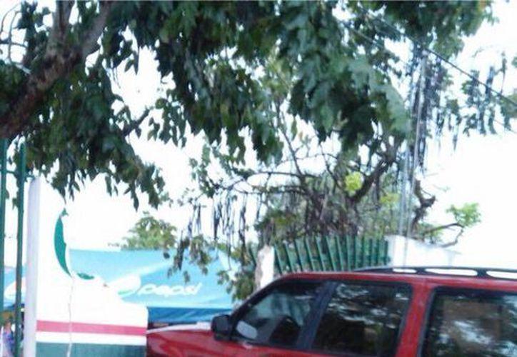 La camioneta derribó la barda y las piedras cayeron sobre las mujeres que estaban dentro de la escuela. (Redacción/SIPSE)
