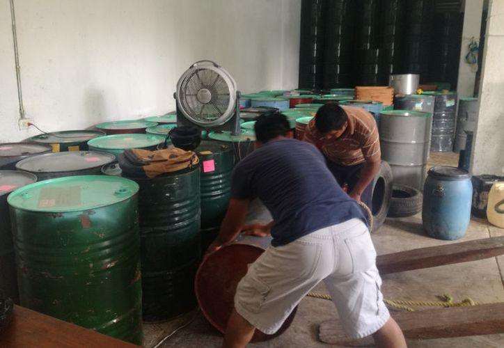 El aumento se debe a la integración del programa de miel orgánica que consiste en llevar un chequeo y estudio constante de la producción de sus abejas. (José Chi/SIPSE)