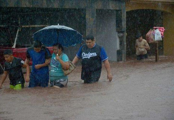 Once municipios de Sinaloa se declararon en estado de emergencia. (Excélsior)