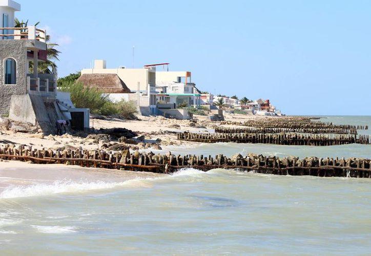 La erosión de las playas cada día es más preocupante, aún con la presencia de los espolones. Imagen de la costa de Chelem. (Milenio Novedades)