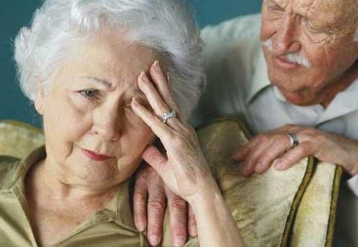El estudio de los científicos del Cinvestav podría ser efectivo en los casos de amnesia inducida farmacológicamente, por envejecimiento.(cromo.com.uy)