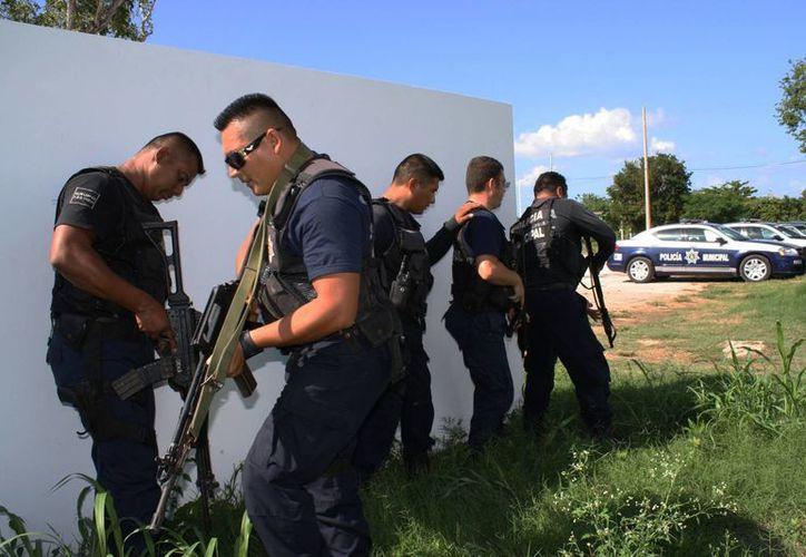 En el caso de armamento, solo una proporción de los 315 elementos policiales cuenta con armas cortas, calibre 9 milímetros. (Enrique Mena/SIPSE)