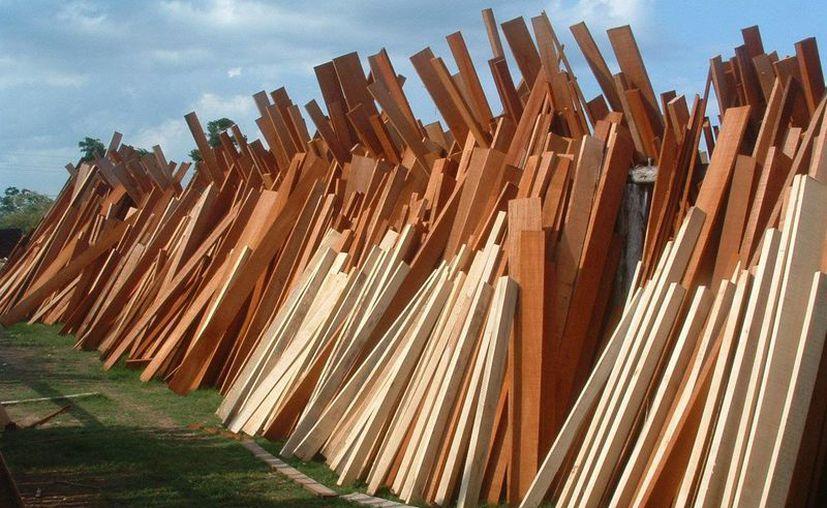 Analizan los costos de fletes para llevar madera a China y Guatemala. (Foto: Juan Rodríguez)