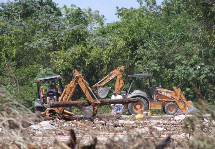 El proyecto ingresado a la Semarnat señala que la explotación de material pétreo se llevaría a cabo en un terreno a la altura del kilómetro 307 de la carretera Playa del Carmen-Cancún. (Octavio Martínez/SIPSE)