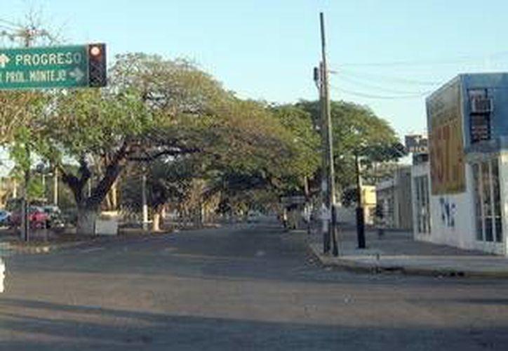 La calle que recorre toda la ciudad será reconstruido desde Circuito Colonias hasta la avenida Marcelino Champagnat (Milenio Novedades)