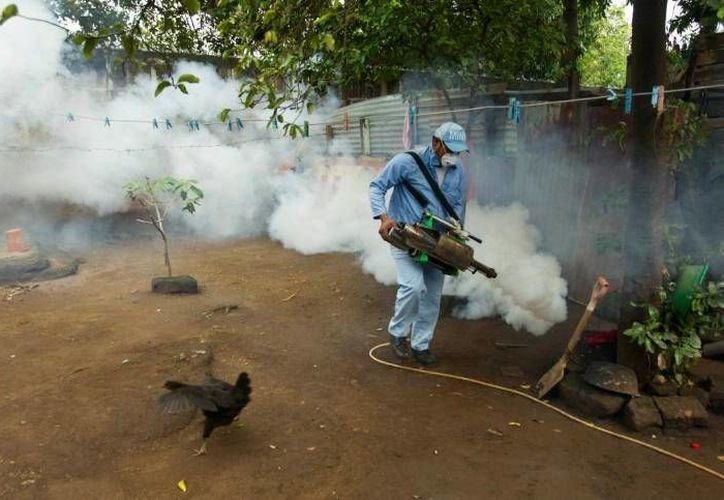 Brigadistas visitarán viviendas para realizar acciones de prevención. (Cortesía/SIPSE)