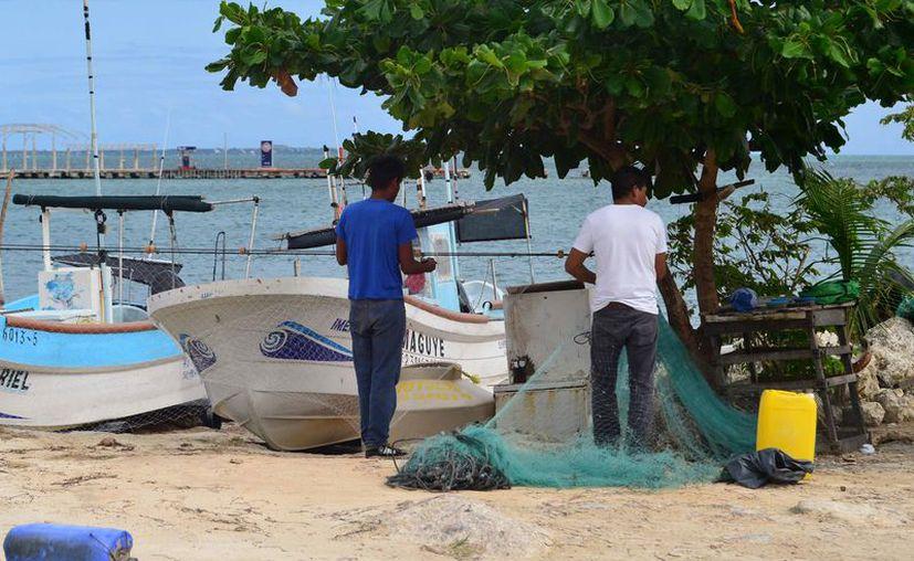 Los pescadores ganan menos de dos salarios mínimos. (Karim Moisés/SIPSE)