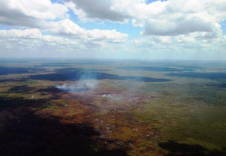 La Conafor y el Conacyt desarrollan un software para el combate de incendios forestales. (Ángel Castilla/SIPSE)