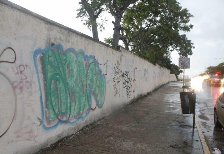 Los delincuentes aprovechan que nadie se encuentra vigilando las escuelas para robar. (Israel Leal/SIPSE)