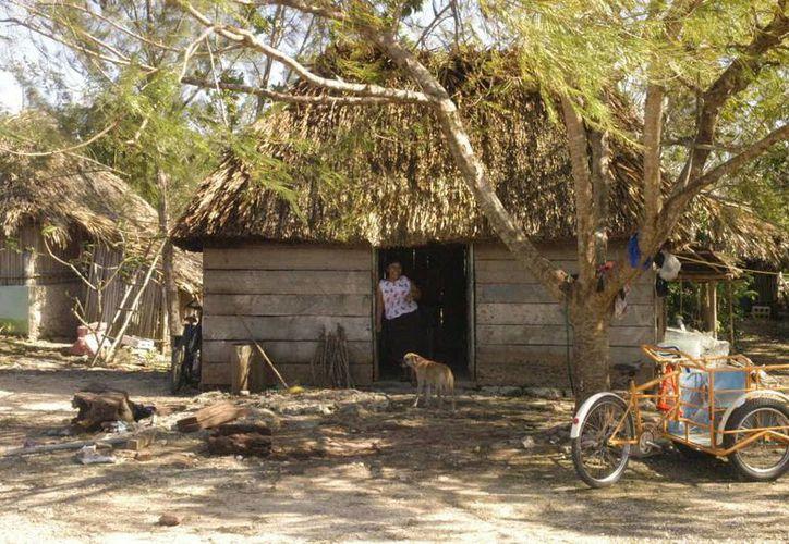 La frágil estructura que presentan algunas viviendas mayas, no soportarían las condiciones ante un fenómeno meteorológico. (Rossy López/SIPSE)