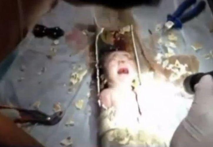 Bomberos rescataron al recién nacido de apenas dos días de nacido (Captura de pantalla)
