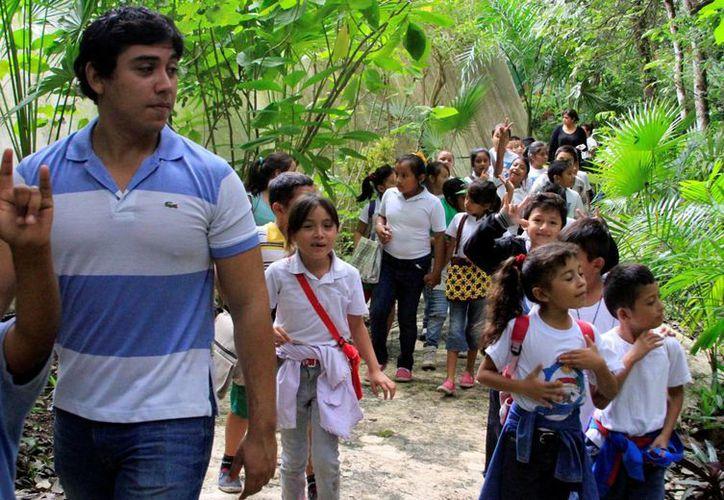 En el zoológico 90 mil pesos se destinan a la alimentación de los animales. (Paloma Wong/SIPSE)