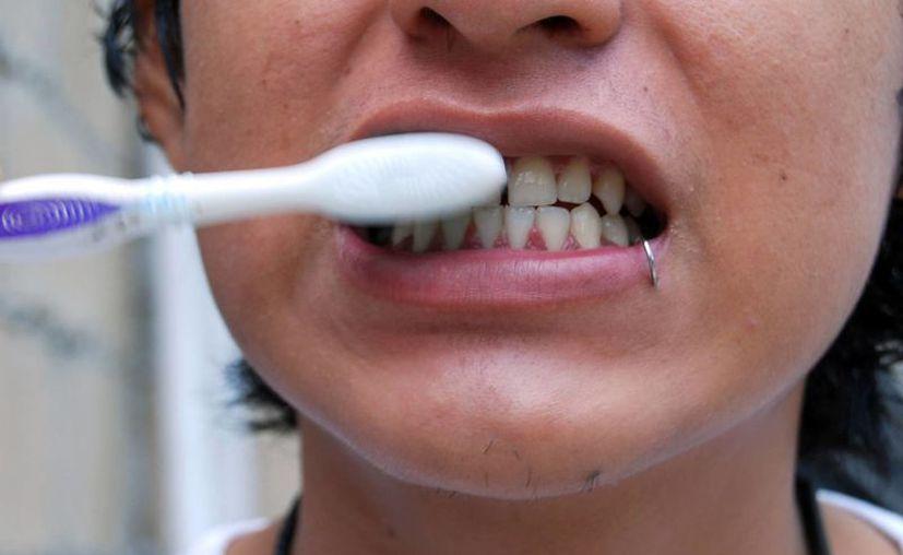 Dentistas recomiendan cambiar el cepillo dental cada tres meses. (Tomás Álvarez/SIPSE)