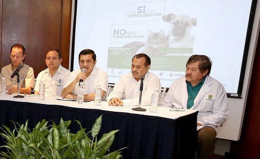La irresponsabilidad de los dueños de animales puede generar un problema de salud pública, advierten. (SIPSE)