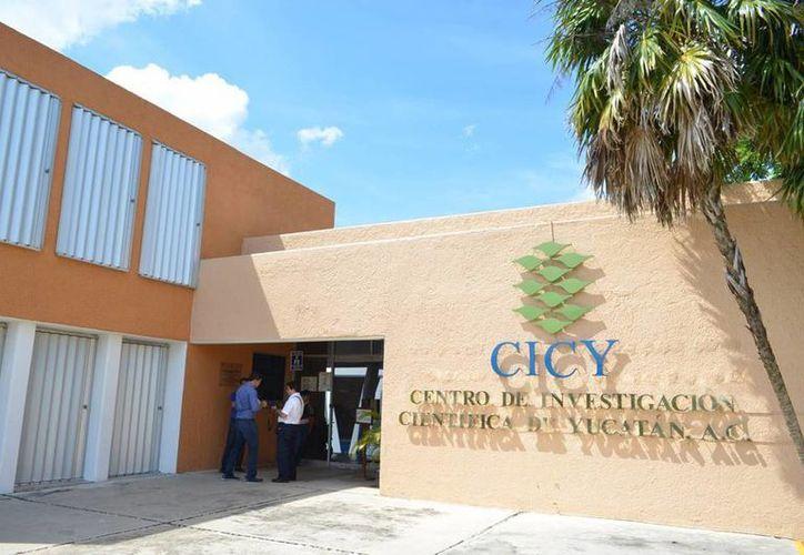 Cerca de 40 muchachos participaron en el encuentro con científicos del CICY. (SIPSE)