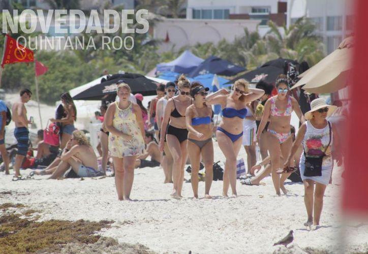 El sargazo no ha sido impedimento para que los extranjeros arriben en grupos a las playas. (Israel Leal/ SIPSE)