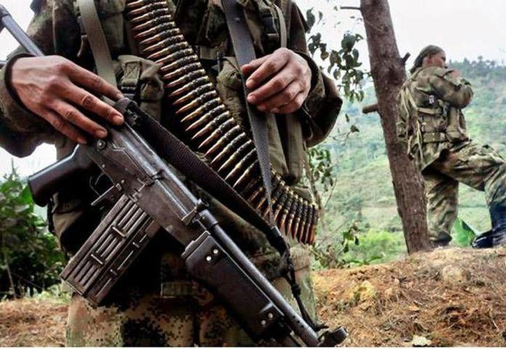 El Ejército colombiano realizó el decomiso en las selvas del Caquetá. (lapatilla.com)