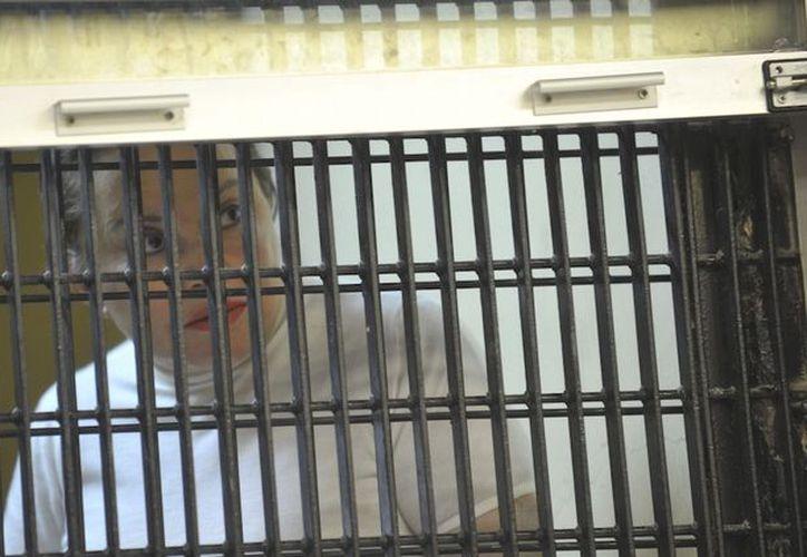 Después de un largo proceso, se resuelve la decisión de prisión domiciliaria de Elba Esther Gordillo. (sinembargo.mx)