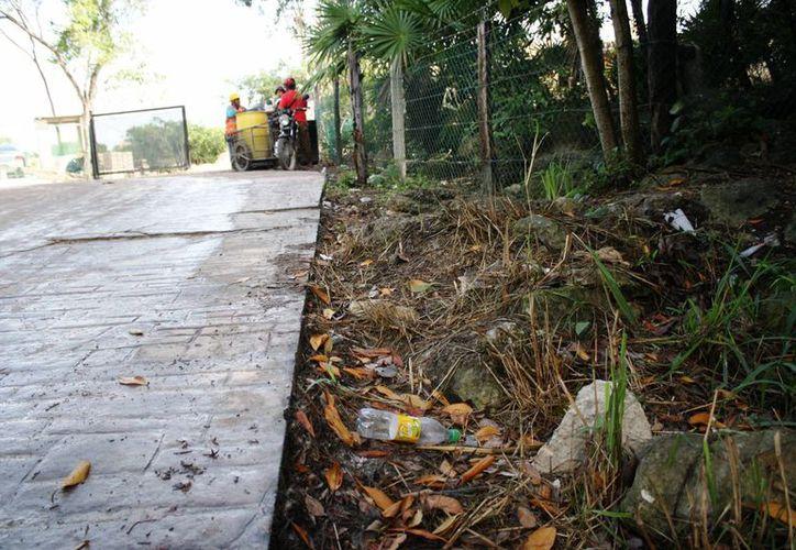 La constructora responsable del edificar el hotel Montecarlo H10 podría ser clausurada hoy por contaminar el manglar. (Octavio Martínez/SIPSE)