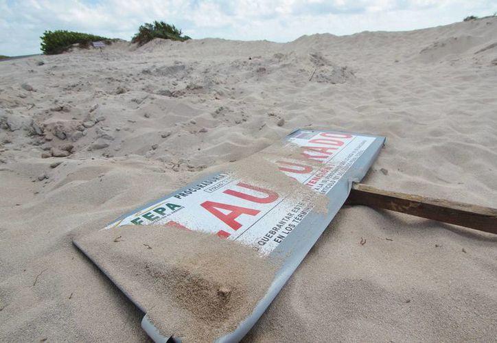 """Ayer había dos letreros de """"clausurado"""" en las dunas de Punta Morena que fueron saqueadas. (Gustavo Villegas/SIPSE)"""