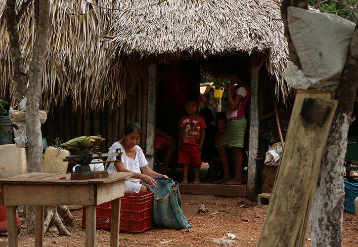Coneval: salen de pobreza extrema 100 mil yucatecos. (Imágenes: Jorge Acosta/Milenio Novedades)
