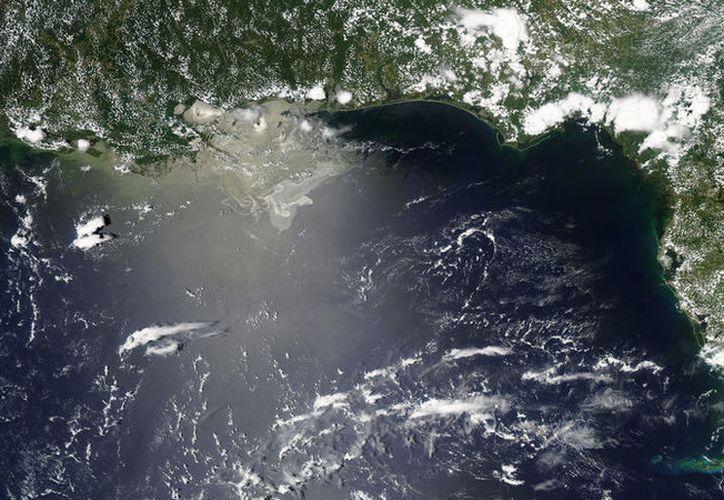 La zona muerta del golfo de México podría crecer más de lo acostumbrado durante este año.  (eoimages.gsfc.nasa.gov)