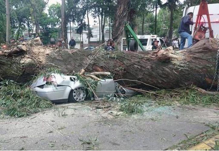 Las víctimas de este accidente ya fueron identificadas. (SDP Noticias)