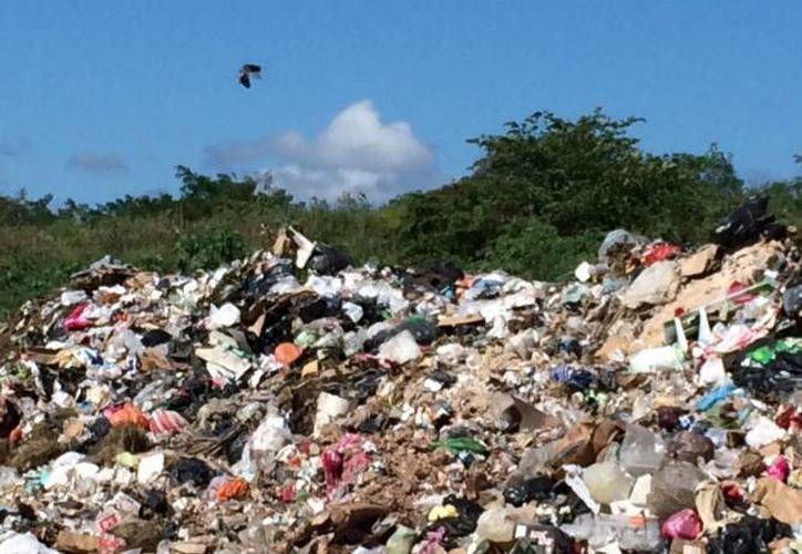 El problema de la basura se ubica por el rumbo de Agua Azul. (Archivo/SIPSE)