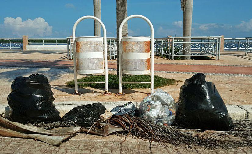Fonatur está limitado para realizar los trabajos de limpieza en el Malecón Tajamar. (Foto: Jesús Tijerina/SIPSE)