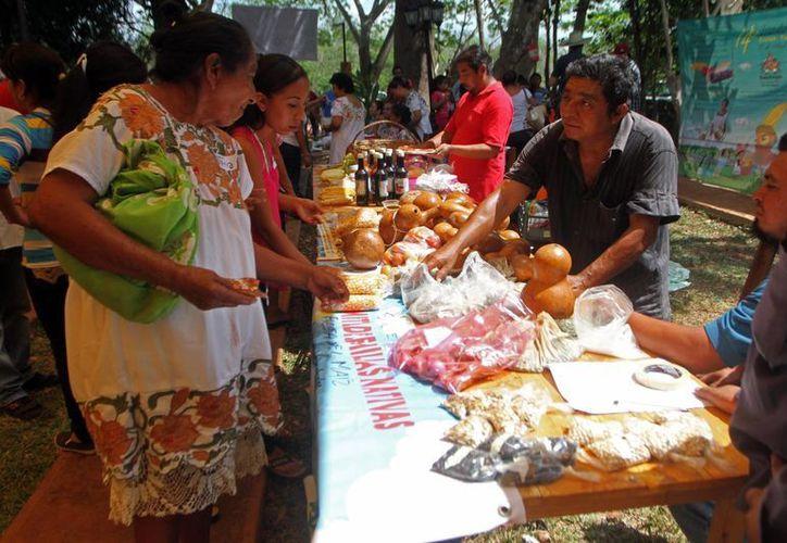 En la Península de Yucatán se llevan a cabo alrededor de 20 ferias relacionadas con la venta o el intercambio de semillas, una de ellas es la Feria del Intercambio de Saberes y Semillas Criollas, realizada este sábado. (Amílcar Rodríguez/Milenio Novedades)