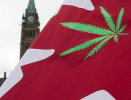 Canadian marijuana company Tilray has first US pot IPO