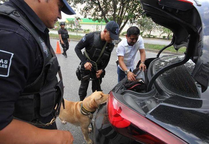 Todos los policías están obligados a identificarse e informarle al ciudadano el motivo de los operativos. (Foto: Redacción)