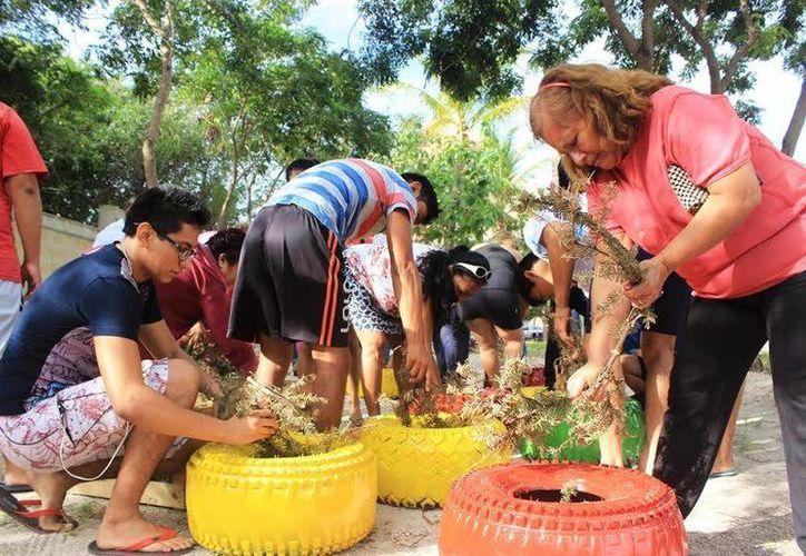 Pobladores de Isla Mujeres utilizaron llantas para plantar árboles. (Redacción/SIPSE)