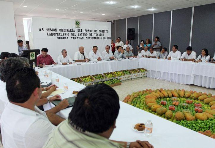 Sesión del comité técnico del FOFAY. (Cortesía)