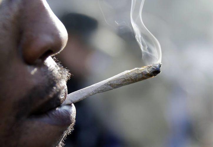En estados como Colorado, Washington, Oregon y Alaska es legal el consumo de la marihuana con fines recreativos. (Archivo/AP)