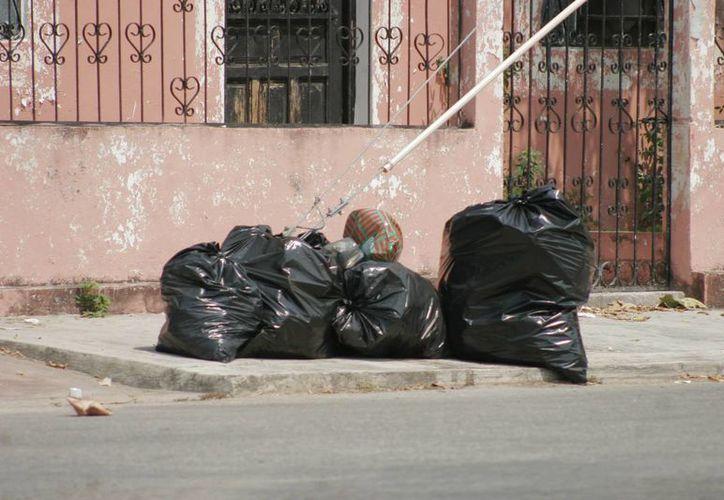 El Ayuntamiento capitalino multiplica los esfuerzos para mantener limpias las calles de la ciudad. (Harold Alcocer/SIPSE)