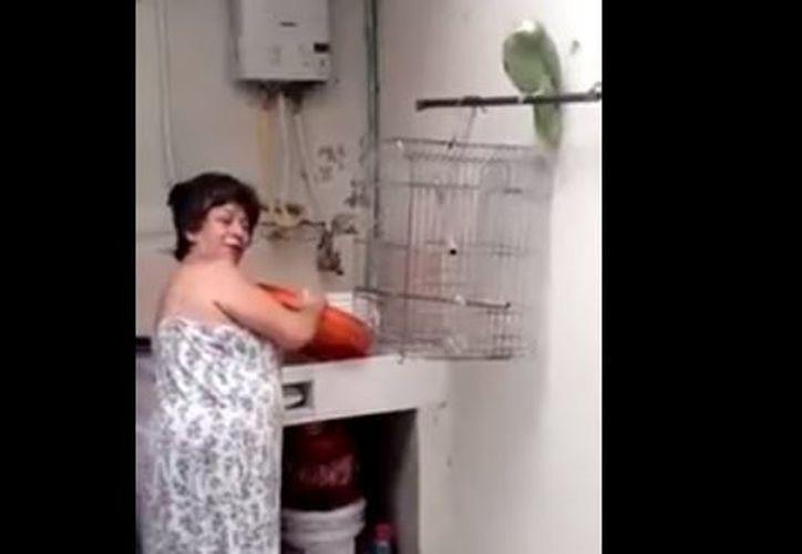El animal se enfrascó en la discusión con la señora y terminó llorando. (Foto: YouTube)