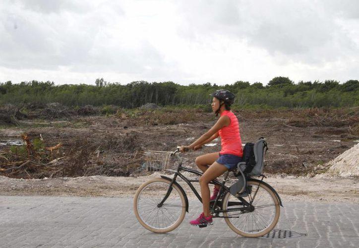 Estudiantes e investigadores del Ecosur, solicitaron un alto de obras en Malecón Tajamar. (Tomás Álvarez/SIPSE)
