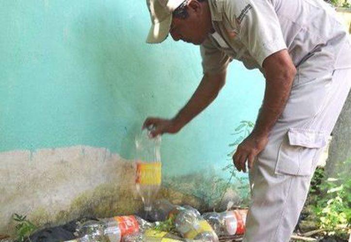 En Quintana Roo a la semana 22 se han registro 258 casos de dengue. (Redacción/SIPSE)