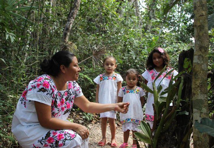 La operadora de ecoturismo, Alltournative, ofreció un recorrido didáctico en una comunidad maya donde operan. (Foto de contexto/Internet)
