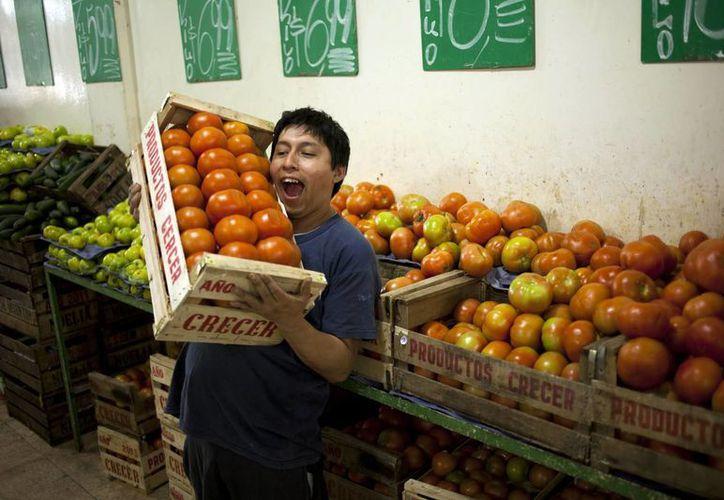 La 'veda' del tomate será por un par de meses. (Agencias)