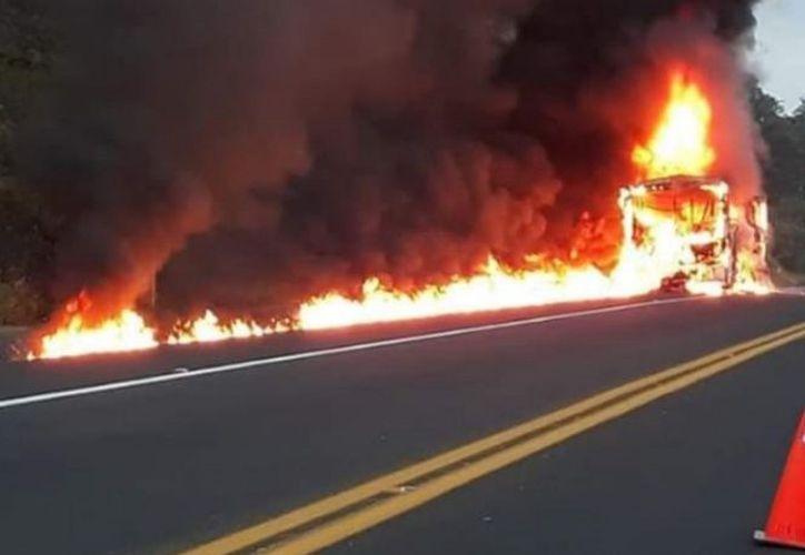 El incendio se registró en el tramo de la carretera Tihuatlán-Totomoxtle. (excelsior.com)